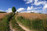 Masuren Landschaft