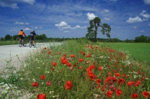 Masuren Radfahren, Fahrradurlaub in Masuren, Masuren Fahrrad, Radreisen in Masuren