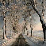 Masuren im Winter