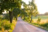 Radtour in Masuren, Radweg in Masuren