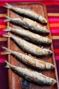 Frischer Masurischer Fisch
