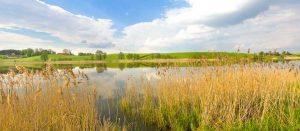 Masuren-See-Masurische-Seenplatte